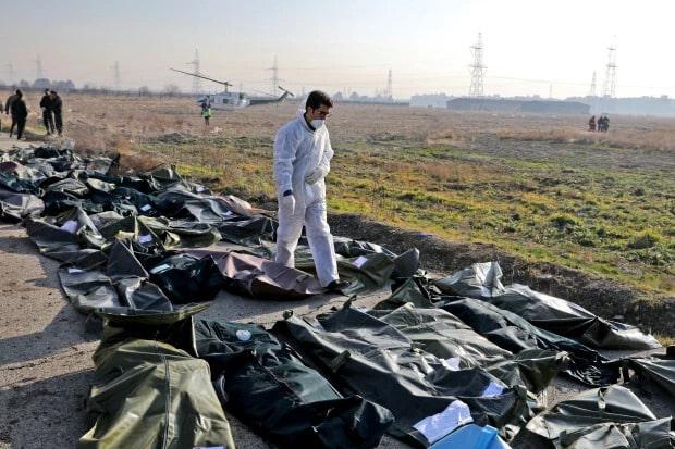 Bodies from plane crash