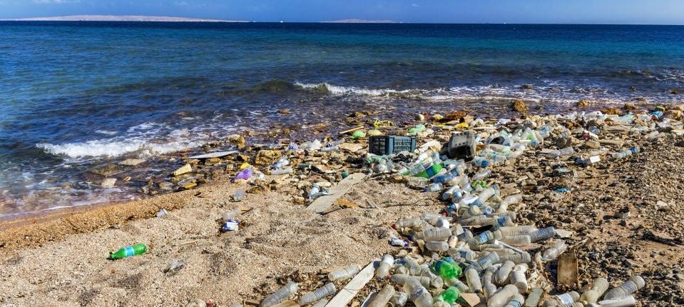 Ilmuwan menciptakan enzim bakteri yang mendaur ulang botol plastik dalam hitungan jam