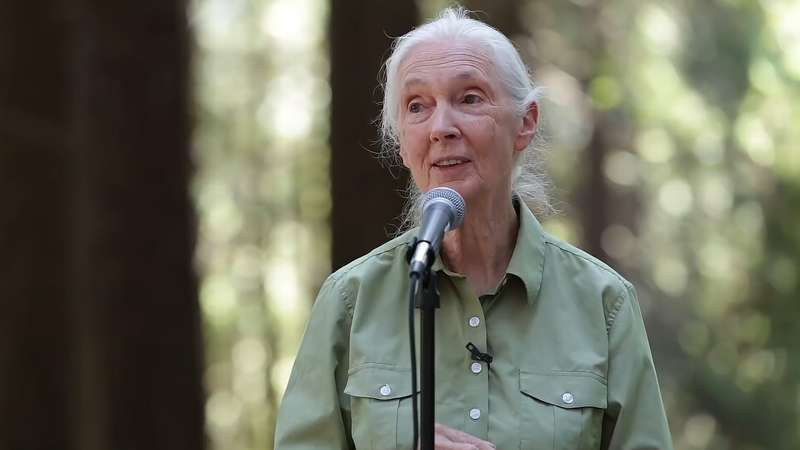 Jane Goodall says Humanity is finished if it fails to adapt after Covid-19