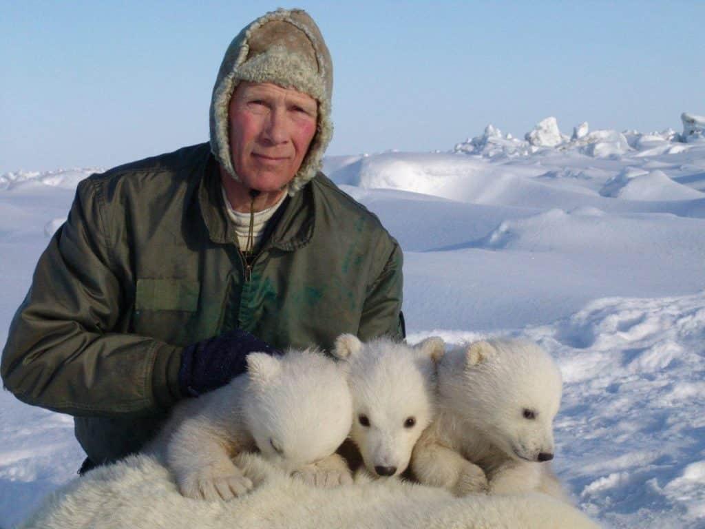 Perubahan iklim untuk memusnahkan beruang kutub pada akhir abad, studi memperingatkan
