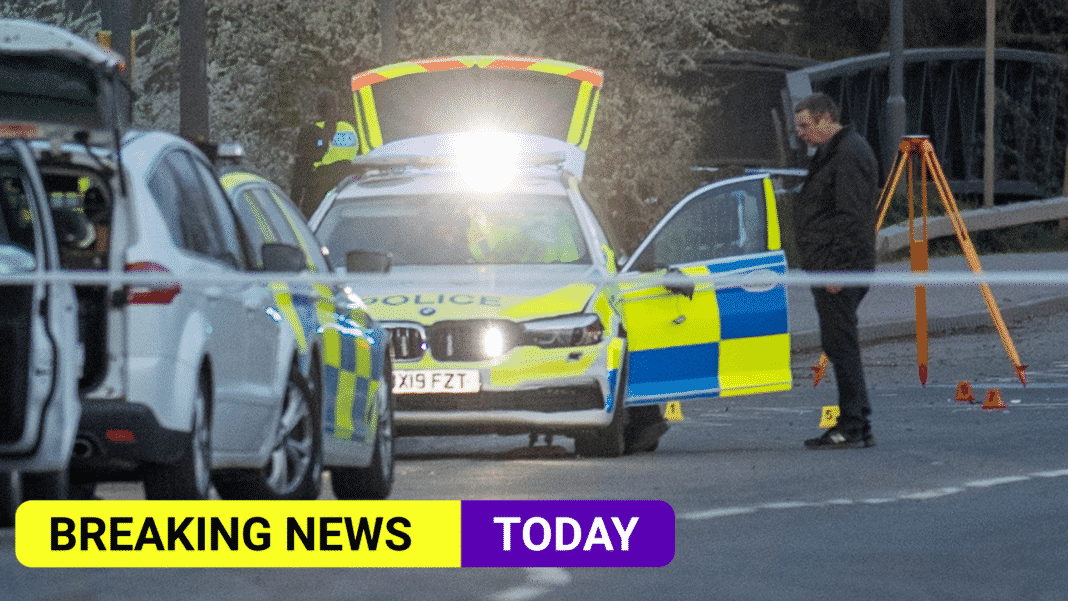 25 year old Woman killed after being hit by police car