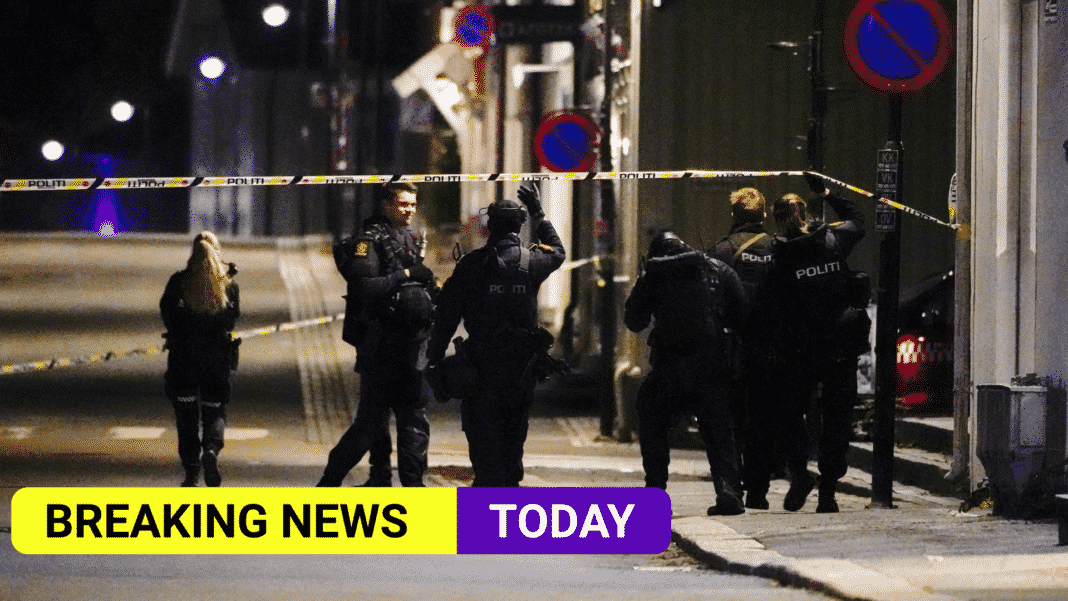 Five people have been killed in Norway bow and arrow attack